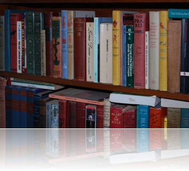 photo of Gretchen's bookshelves by bethanytissphotography.com