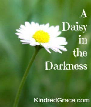 A Daisy in the Darkness