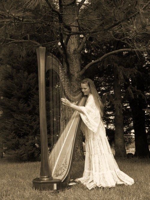 praise the Lord with a harp