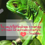 Lizard Love and Loneliness