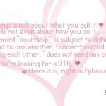 Courtship DTR