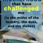 books on motherhood that have challenged me