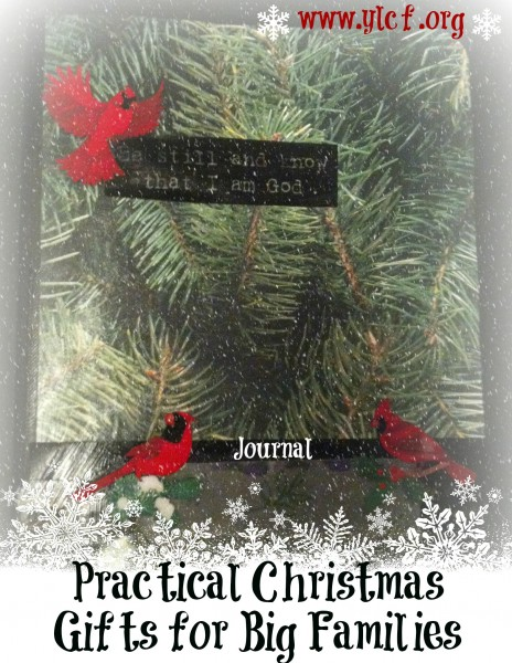 Practical Christmas Gifts for Big Families - Kindred Grace