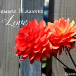 """I think of it as """"The Summer I Learned Love"""""""