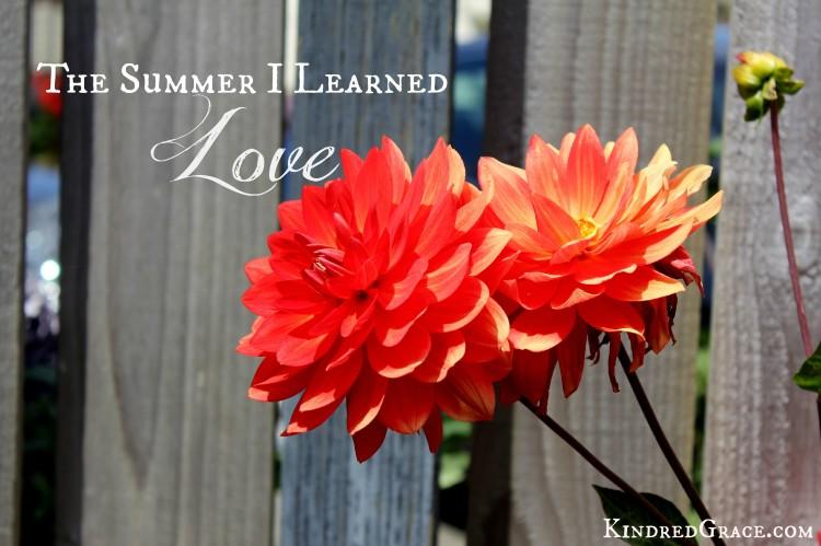 The Summer I Learned Love @natashametzler