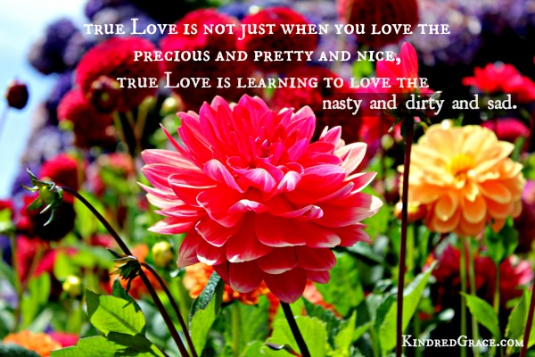 true love @kindredgrace