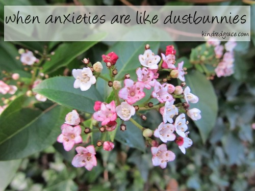 when anxieties are like dustbunnies