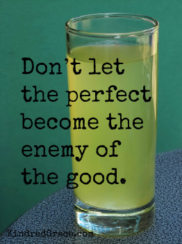 Don't let the perfect become the enemy of the good.