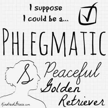 I suppose I could be a Phlegmatic.