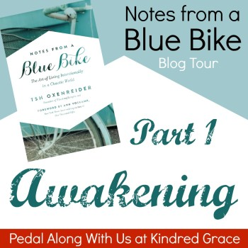 Notes from a Blue Bike, Part 1: Awakening