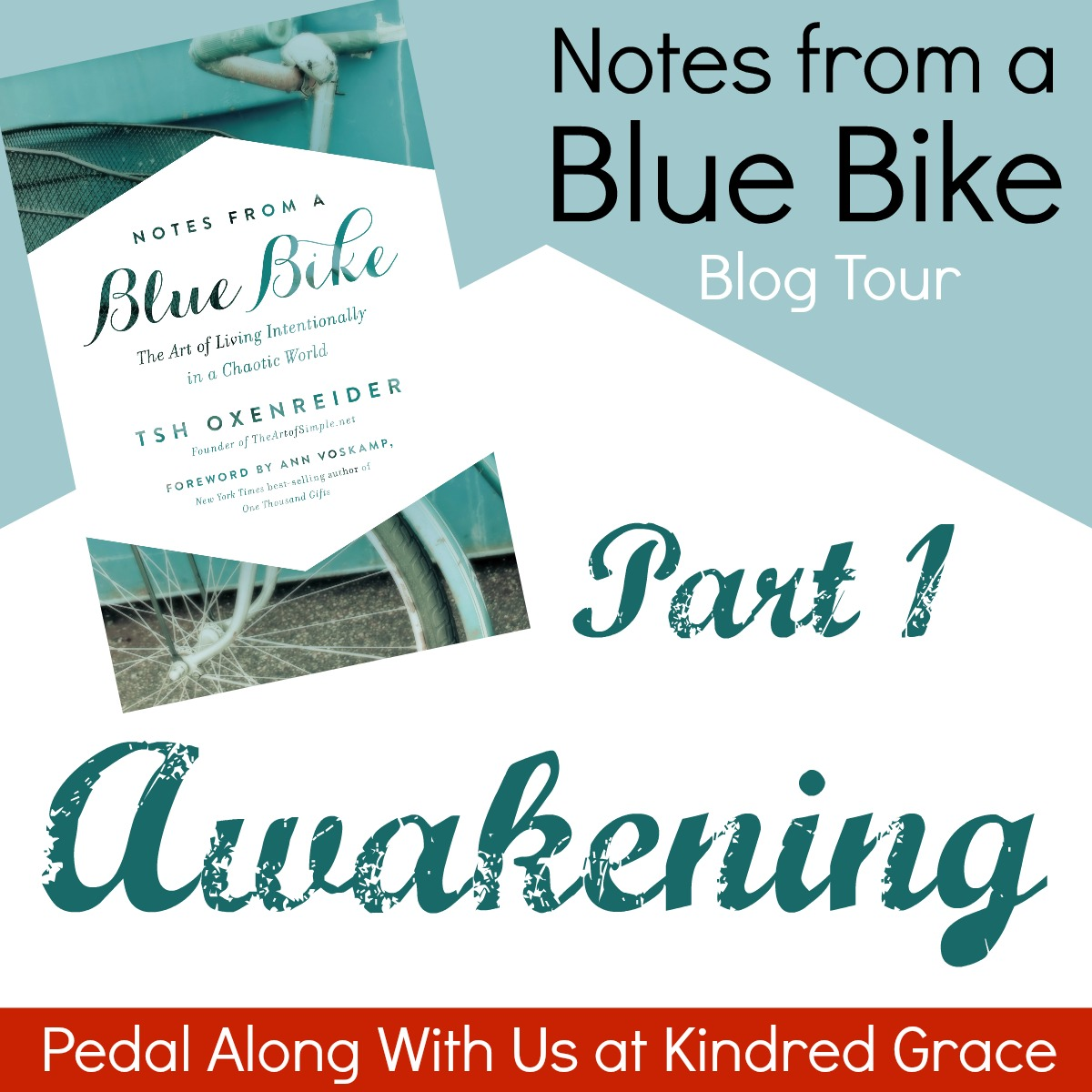Notes from a Blue Bike, Part 1: The Awakening
