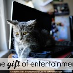 the gift of entertainment