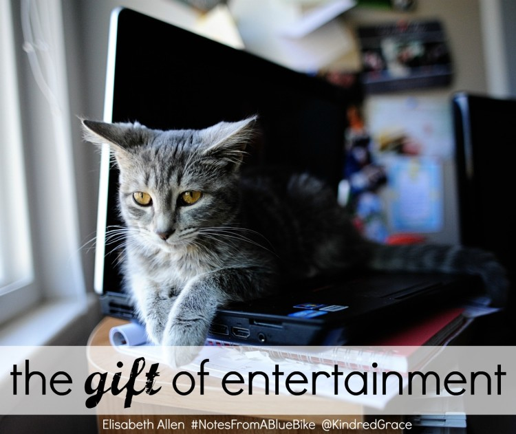 of #NotesFromABlueBike and the gift of #entertainment at @KindredGrace