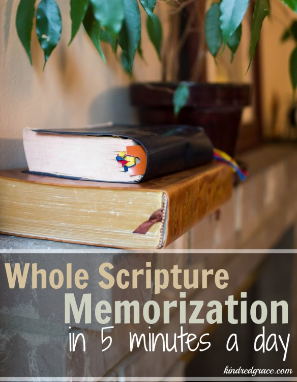 Whole Scripture Memorization in 5 Minutes a Day