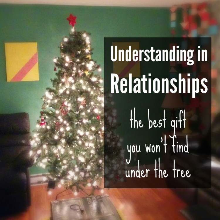 Understanding in Relationships: the best gift you won't find under the tree