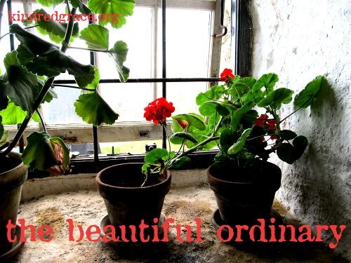kg-jan-14-the-beautiful-ordinary