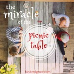 the miracle of the picnic table