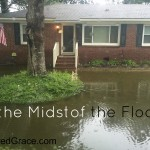 In the Midst of the Flood