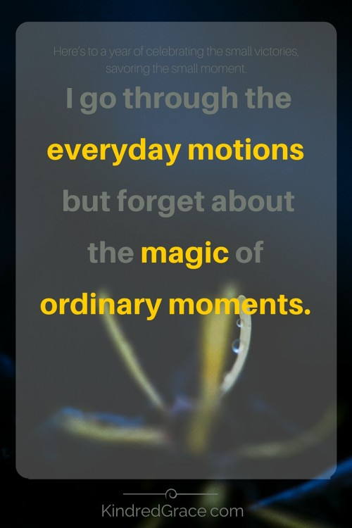 the magic of ordinary moments