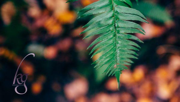 6 Books to Grow Your Faith