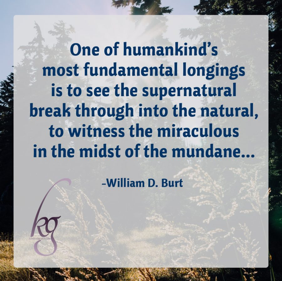 """One of humankind's most fundamental longings is to see the supernatural break through into the natural, to witness the miraculous in the midst of the mundane... This yearning arises not so much out of an escapist mentality, but from a hunger to assure ourselves that there is more to life than the purely tangible, that our earthly existence has a cosmic purpose."" (William D. Burt)"
