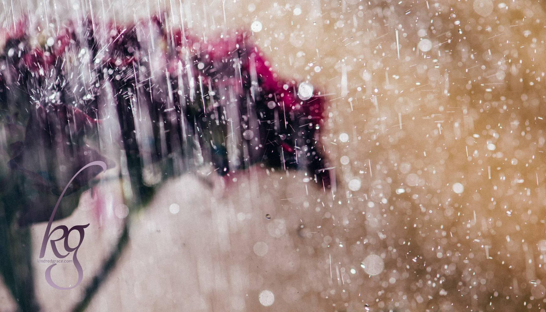 Choosing Joy in the Rain