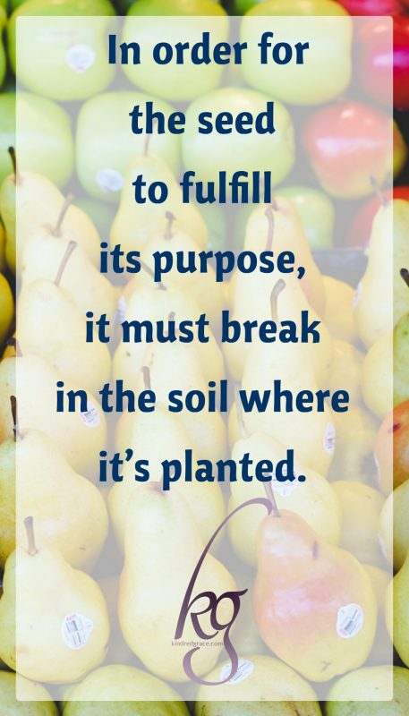 This is where all fruit begins, a simple seed. But yet in order for the seed to fulfill its purpose, it must break in the soil where it's planted.