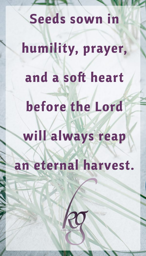 Seeds sown in humility, prayer, and a soft heart before the Lord will always reap an eternal harvest.