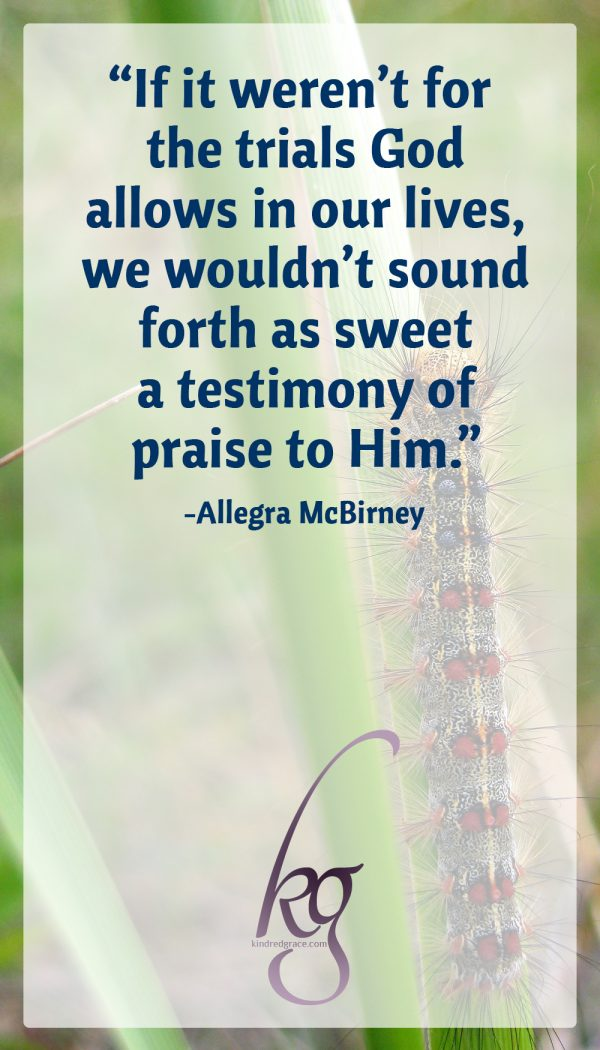 The pressure then was necessary for the praise now… If it weren't for the trials, the hard things God allows in our lives, we wouldn't sound forth as sweet a testimony of praise to Him, either. (from God's Harp by Allegra McBirney)